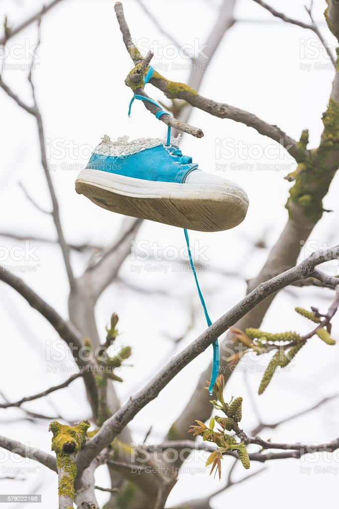 On a tree branch hanging shoe girl stock photo