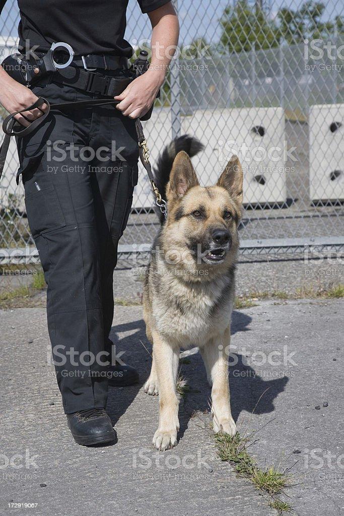 On Guard stock photo