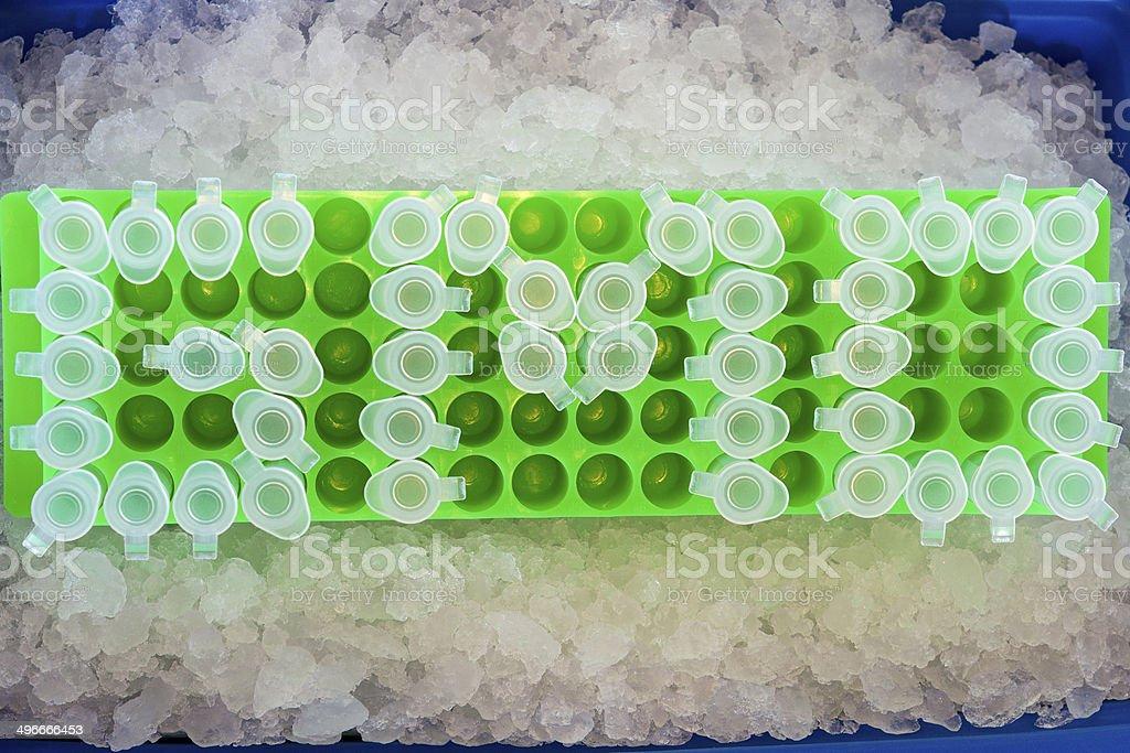 GMO on ice! stock photo
