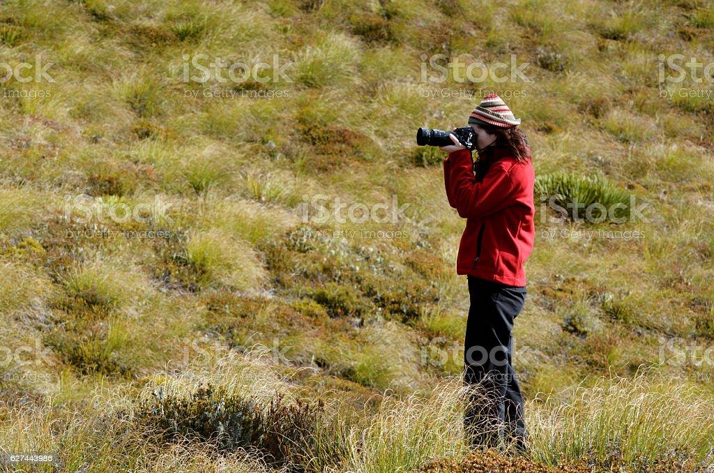 On Location Photographer stock photo