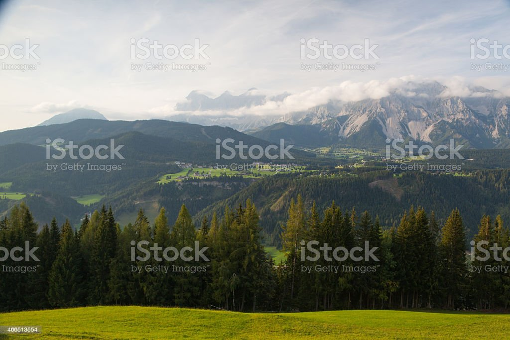 On pasture in mountains stock photo