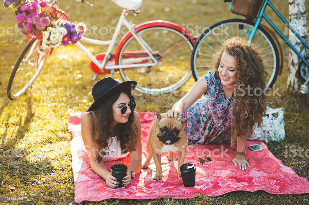 On picnic with bestie and my dog stock photo