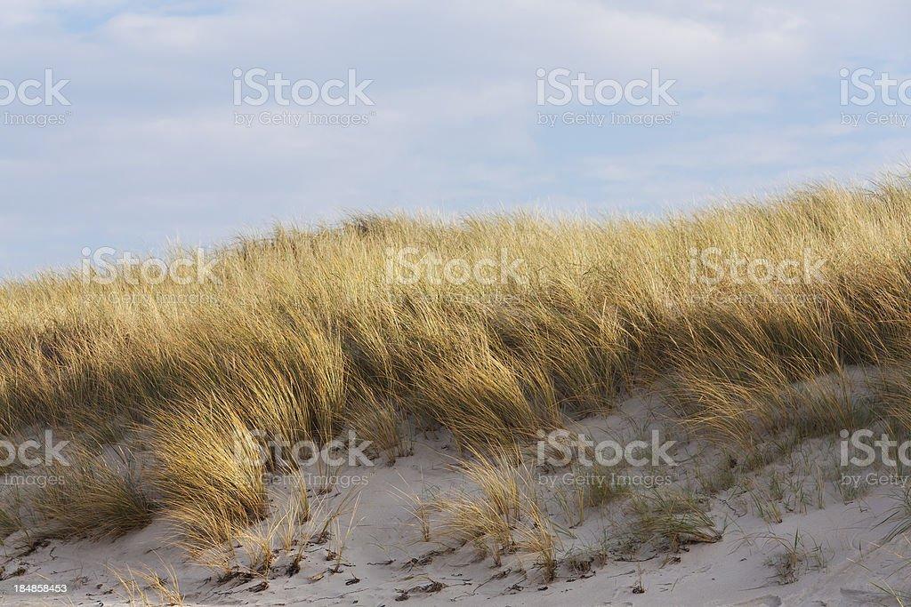 On the Beach, Darsser Ort stock photo
