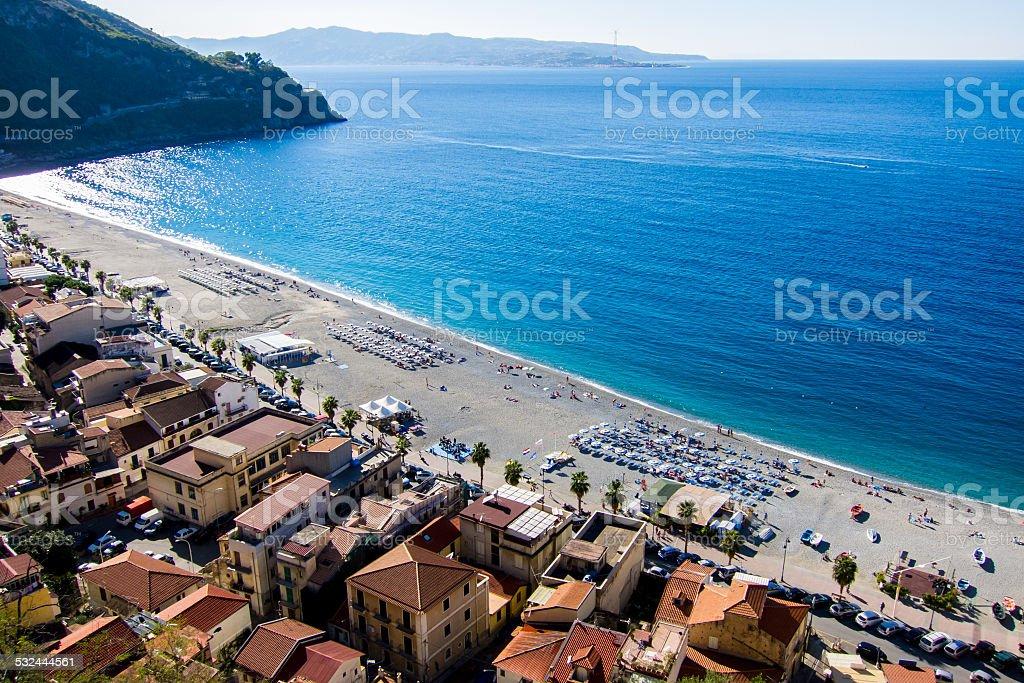 On the Beach I (Scilla) stock photo