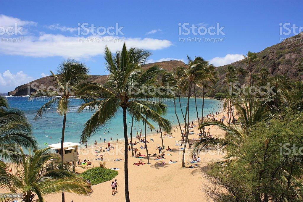 On the beach in Hanauma Bay, Hawaii stock photo