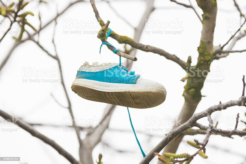 On the branch of a tree hung a shoe stock photo