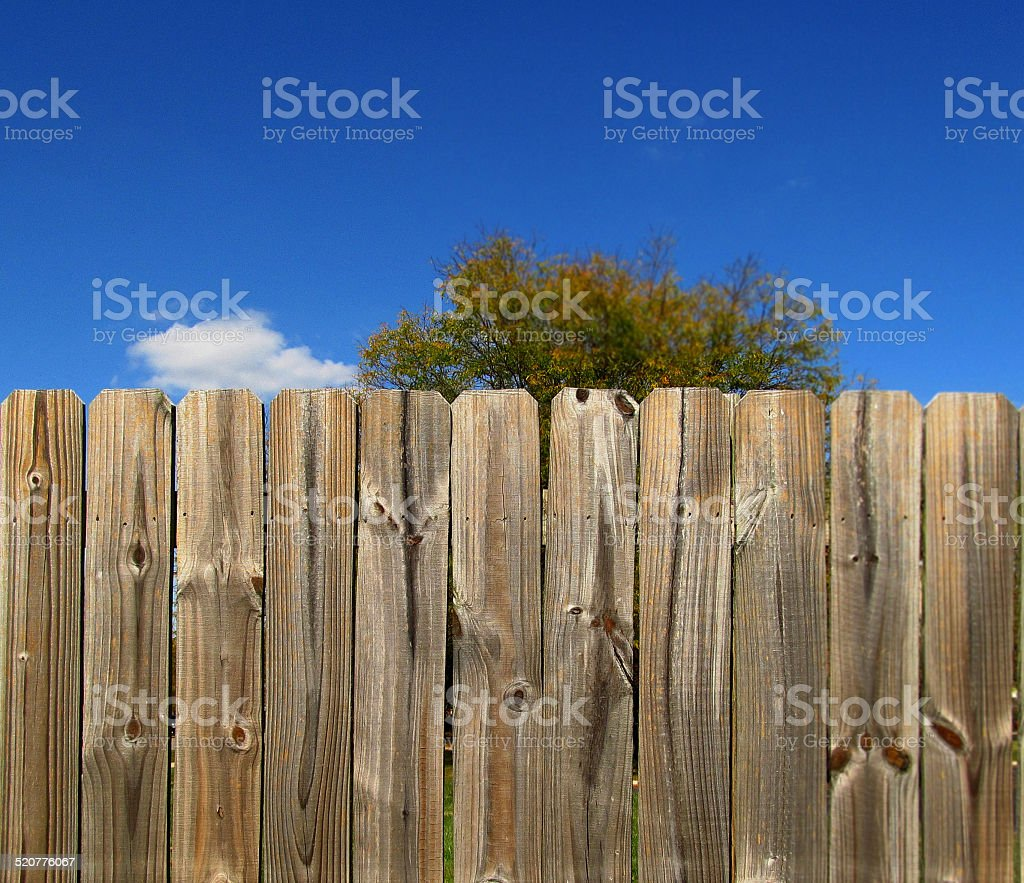 On the fence, again stock photo