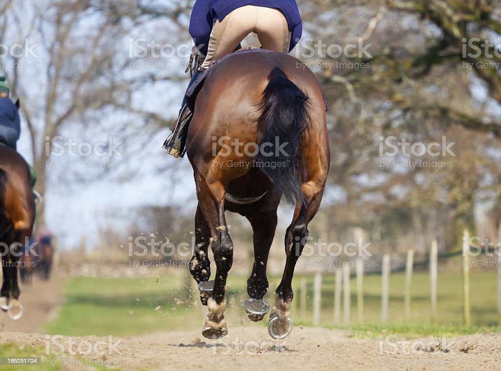 On the Gallops royalty-free stock photo
