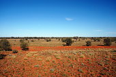On the Ghan, looking out of the window