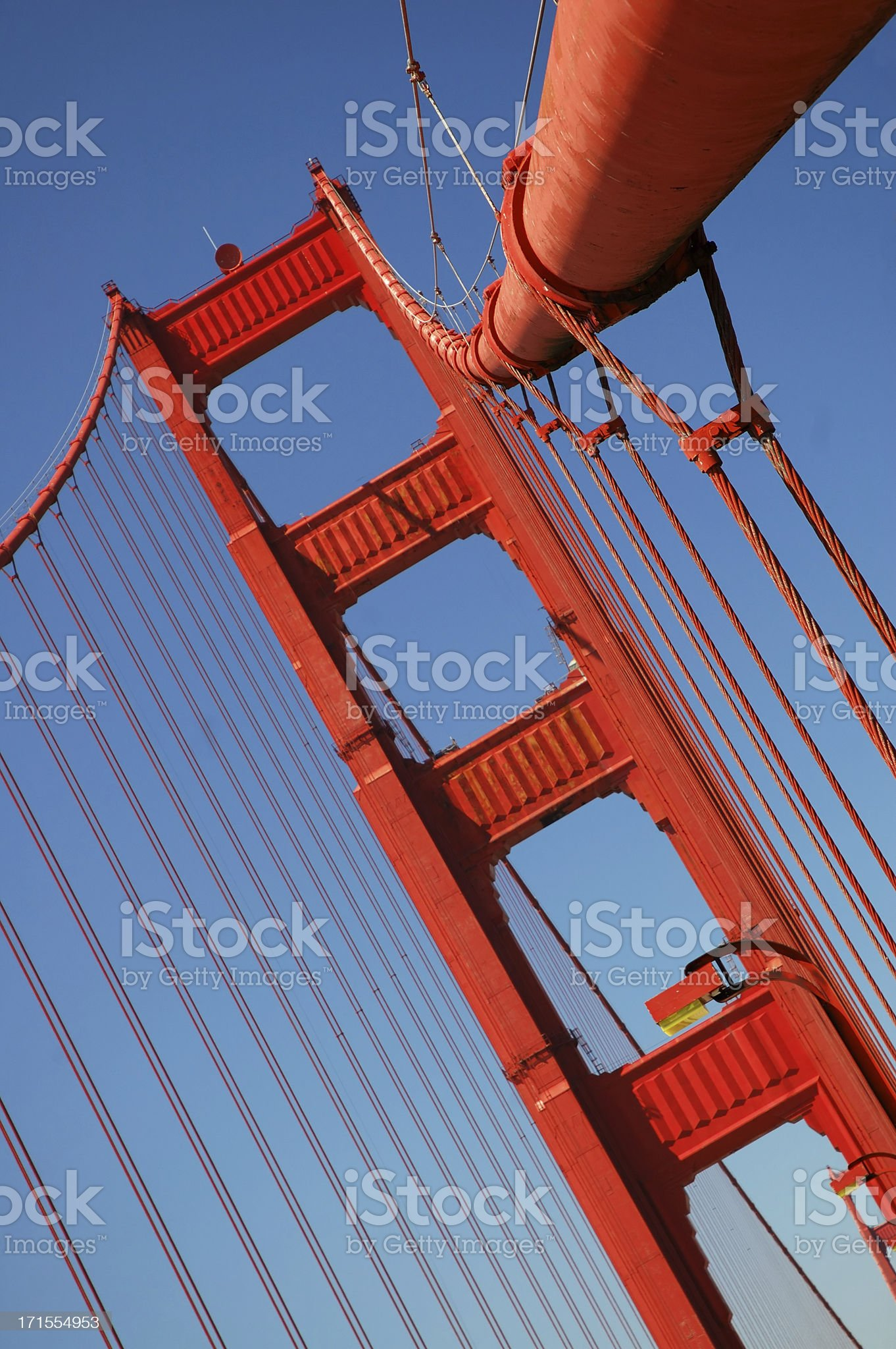 On the Golden Gate royalty-free stock photo