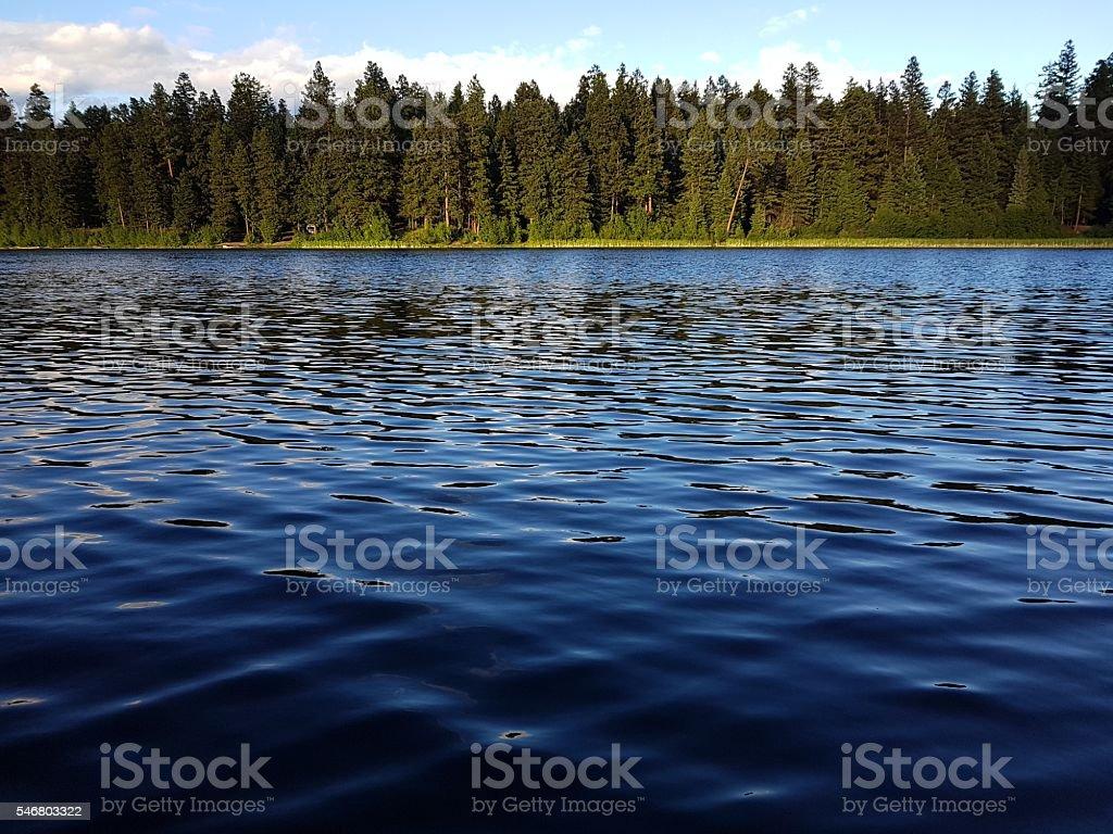 On the lake stock photo
