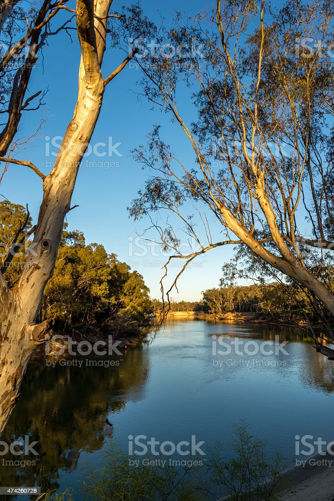 On the Murray River early morning stock photo