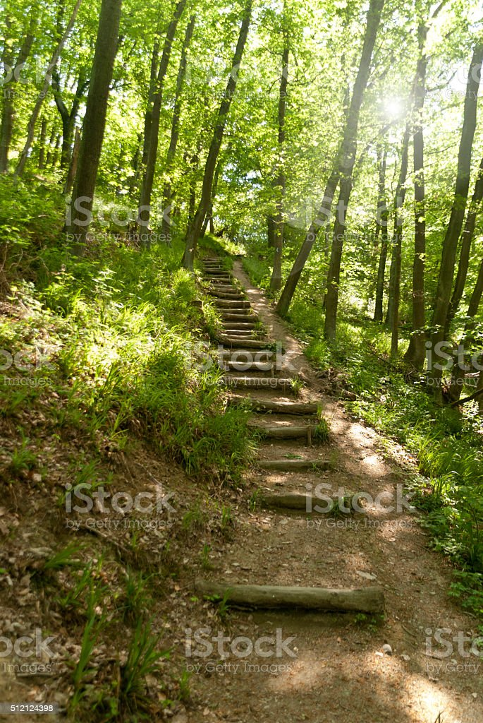 On The Reinsteig in Germany stock photo