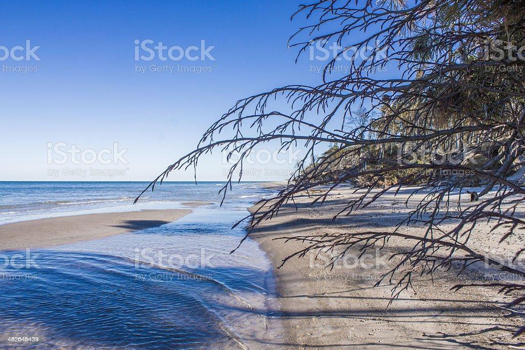 On the shore of west beach darß stock photo
