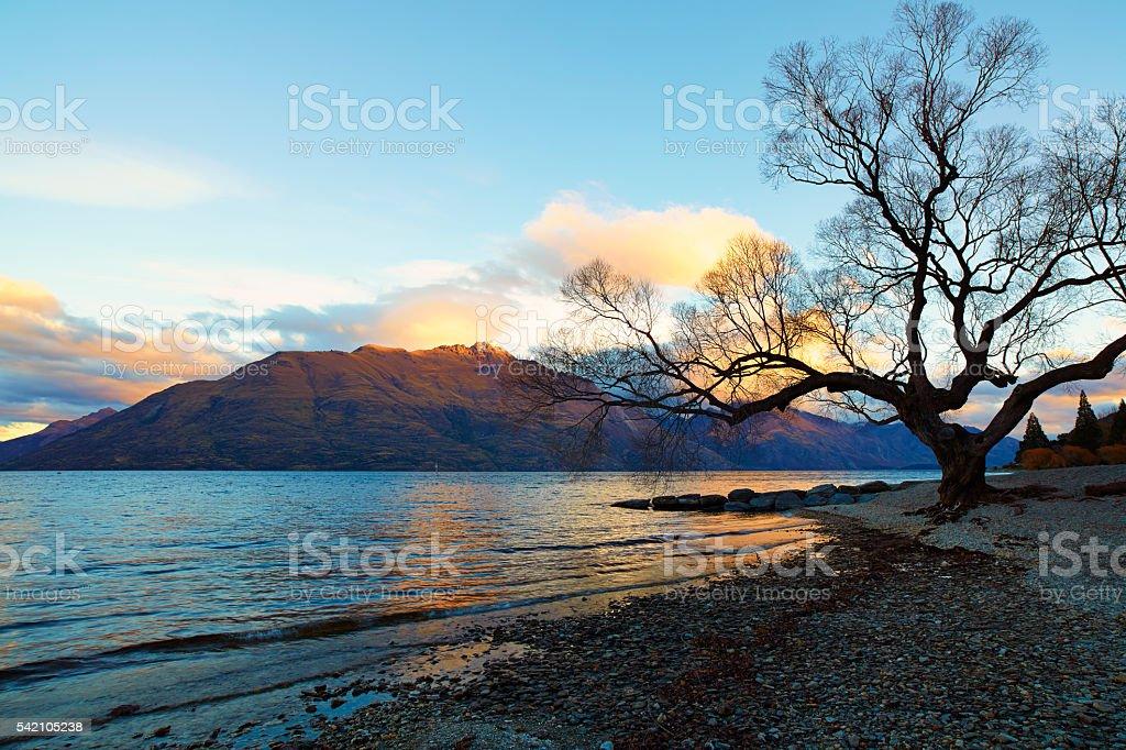 On The Shores Of Lake Wakatipu stock photo