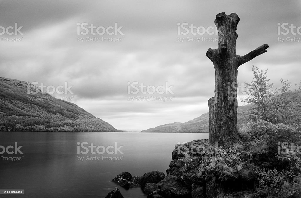 On The Shores Of Loch Lomond stock photo