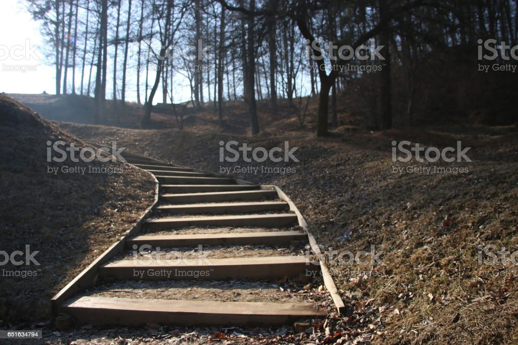 On the stairs. stock photo