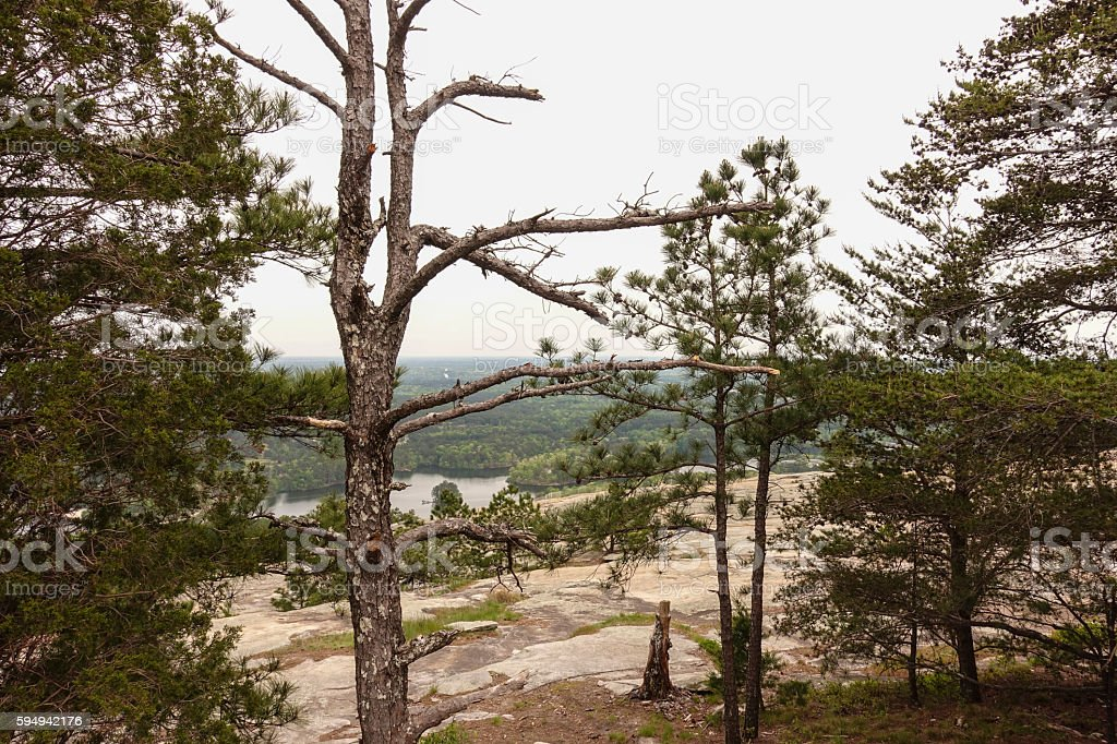 On the Top of Sone Mountain Georgia Lizenzfreies stock-foto