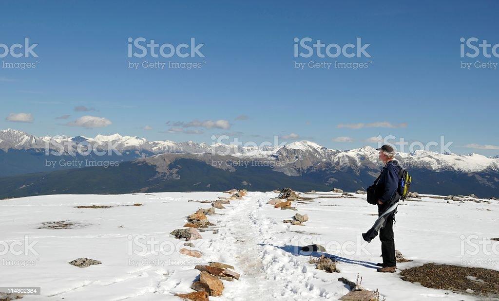 On the  top of Whistler's Mountain stock photo
