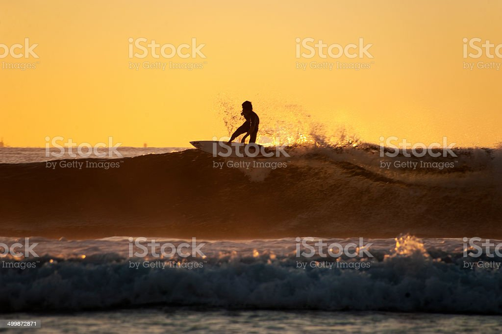 On top of the wave. stock photo