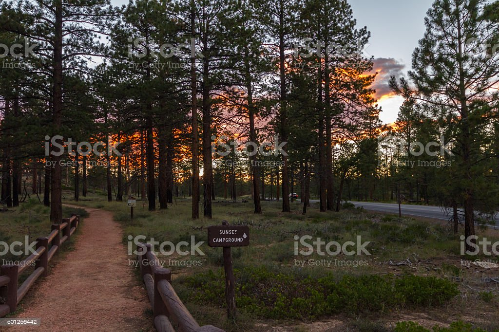 On way to sunset campground, Bryce Canyon stock photo