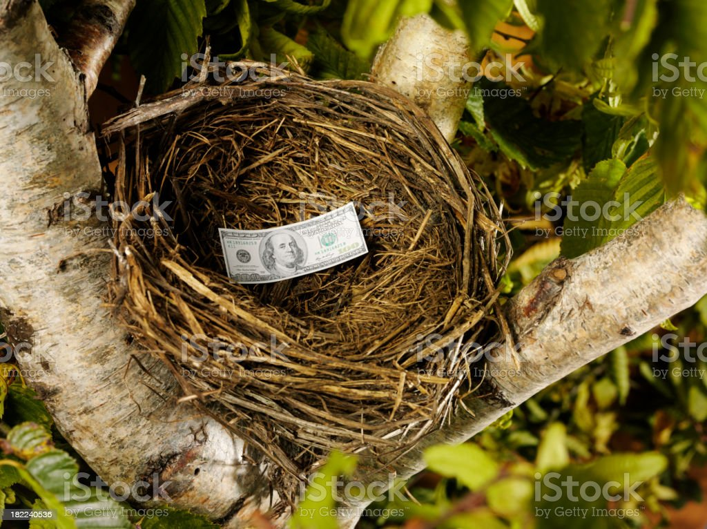 One American Dollar in a Bird's Nest royalty-free stock photo