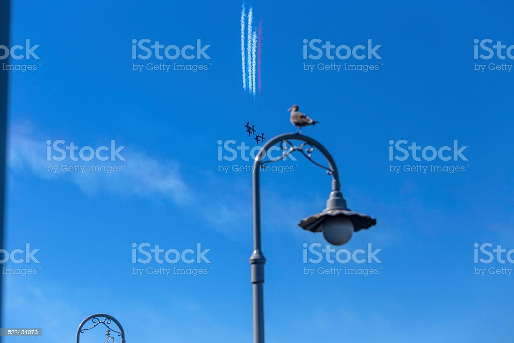 One bird standing on the light equipments stock photo