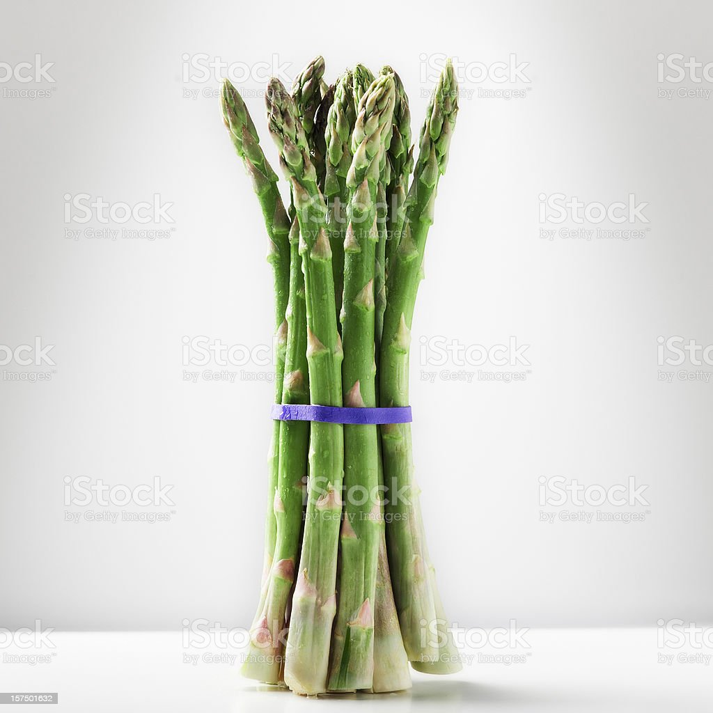 One bunch of asparagus stock photo