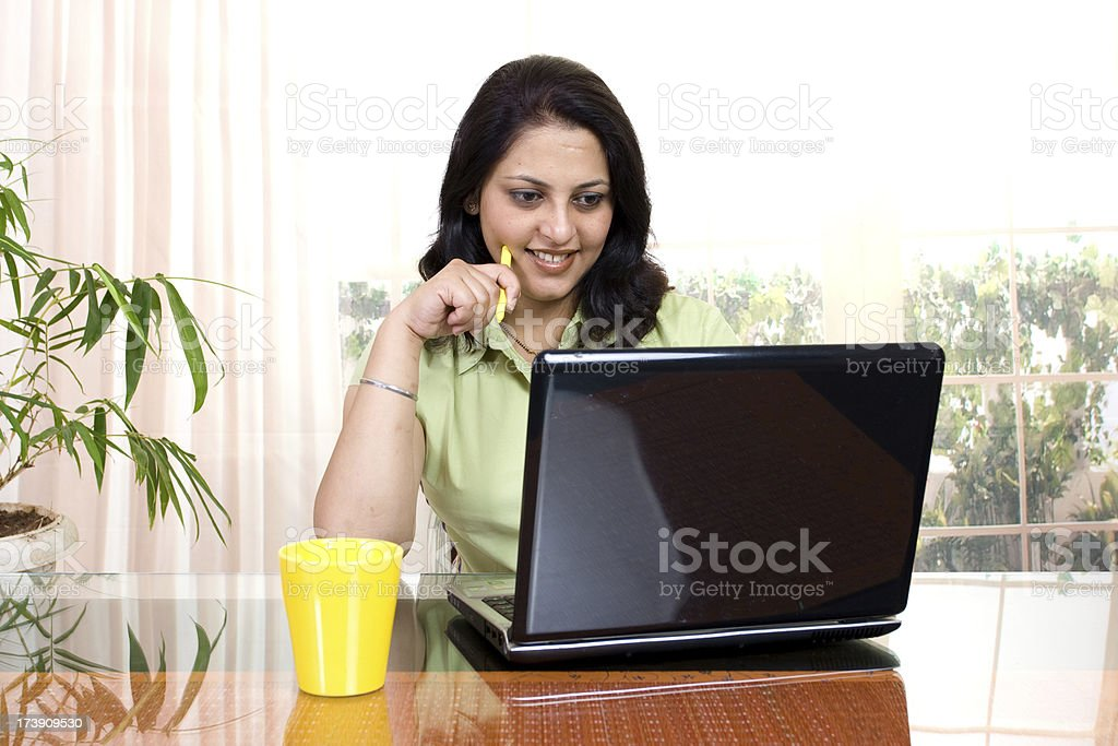 One Cheerful Indian Businesswoman Using Laptop stock photo