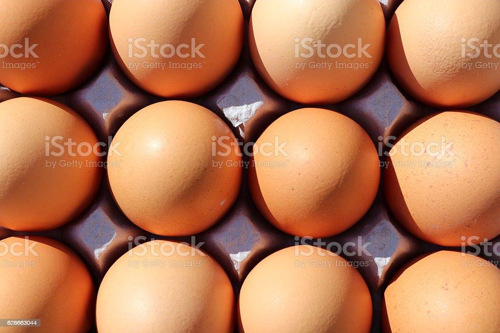 one dozen eggs on carton stock photo
