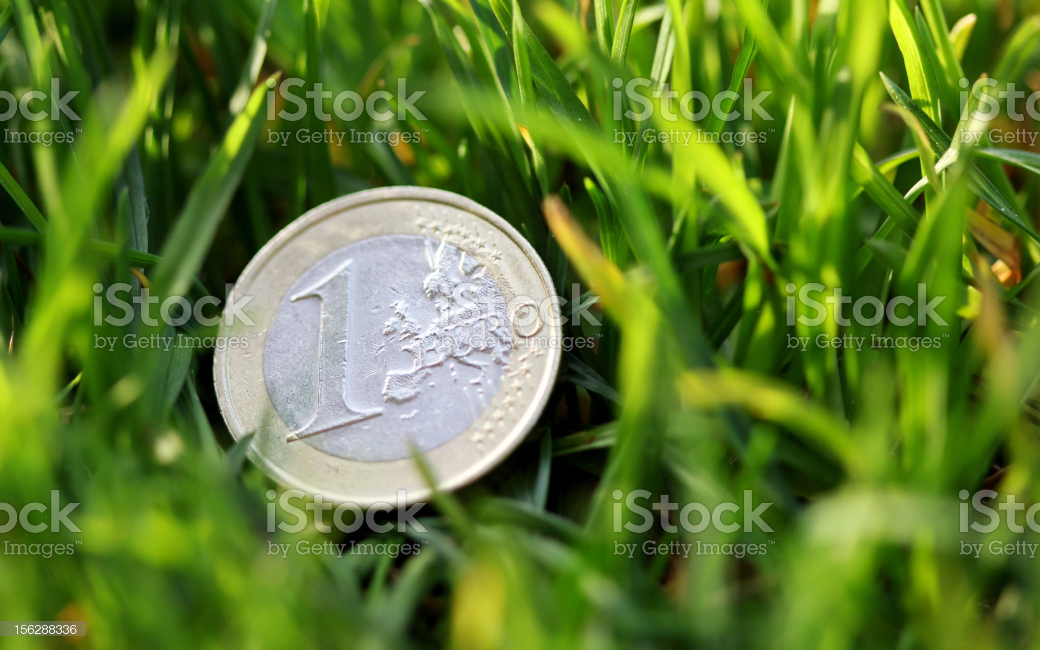 One Euro coin in the grass (macro shot) royalty-free stock photo