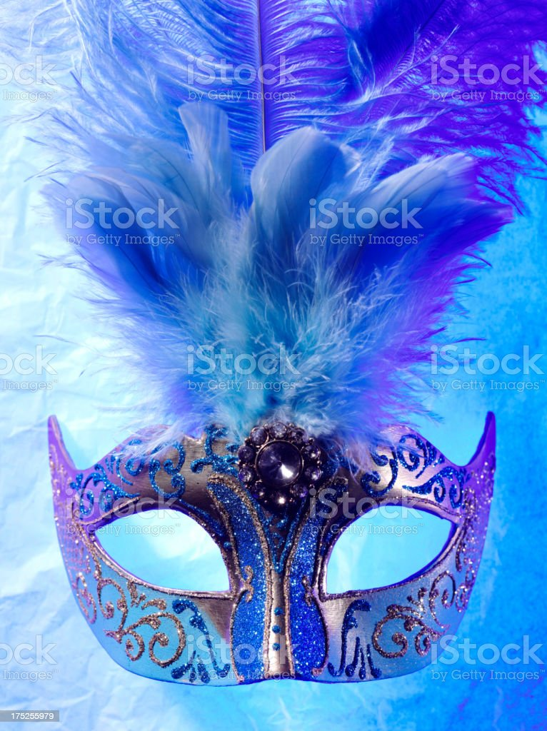 One Feathered Venetian Masquerade Mask royalty-free stock photo