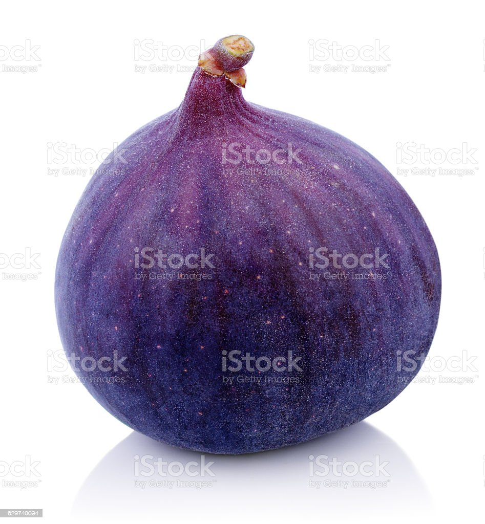 One Fig fruit on white stock photo