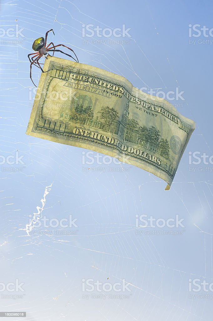 One Hundred Dollar Bill caught in a Spiderweb royalty-free stock photo