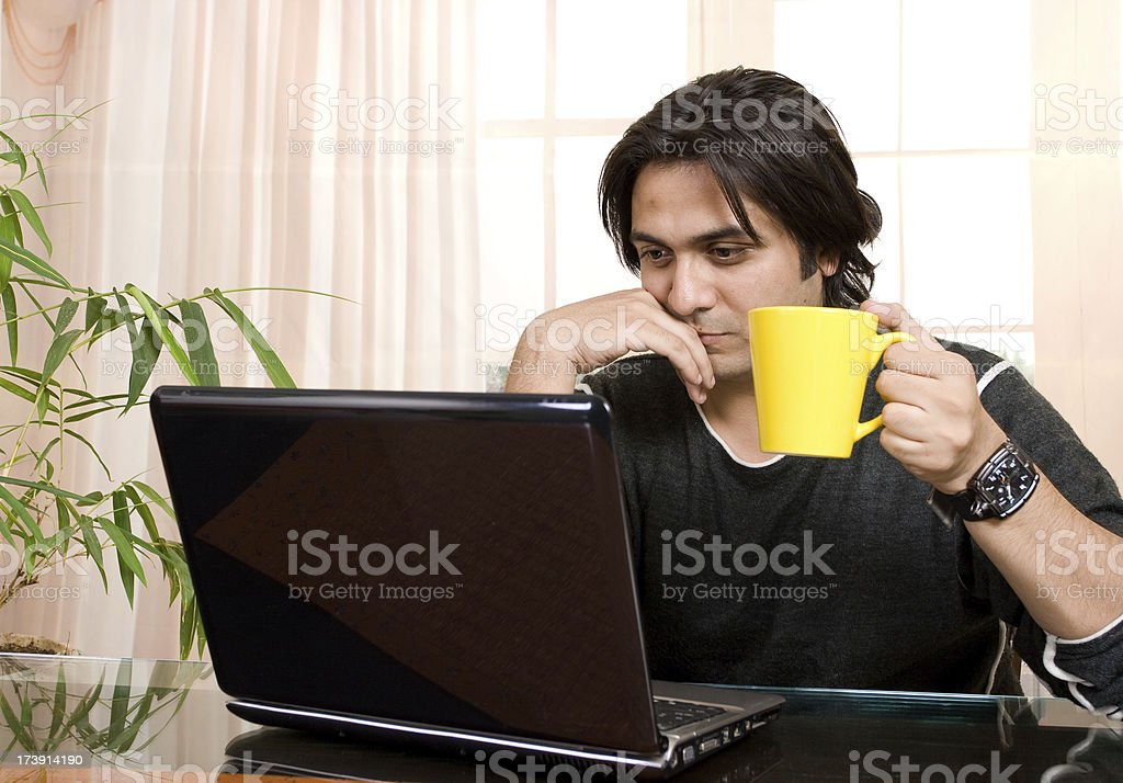One Indian Businessman Using Laptop royalty-free stock photo