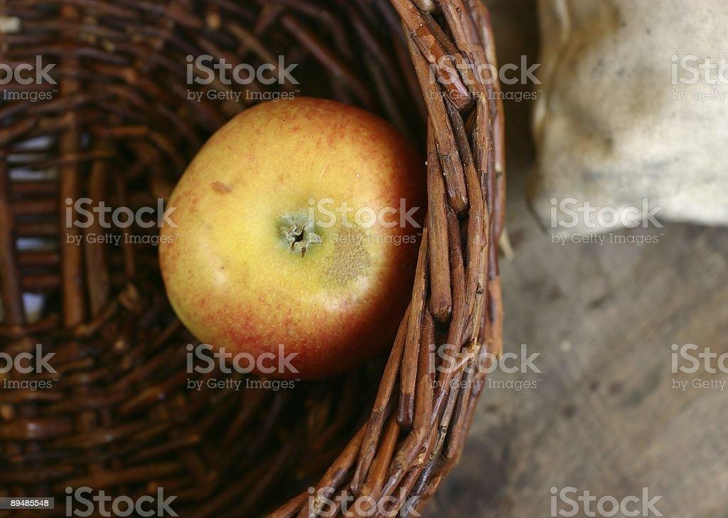 one last apple left royalty-free stock photo