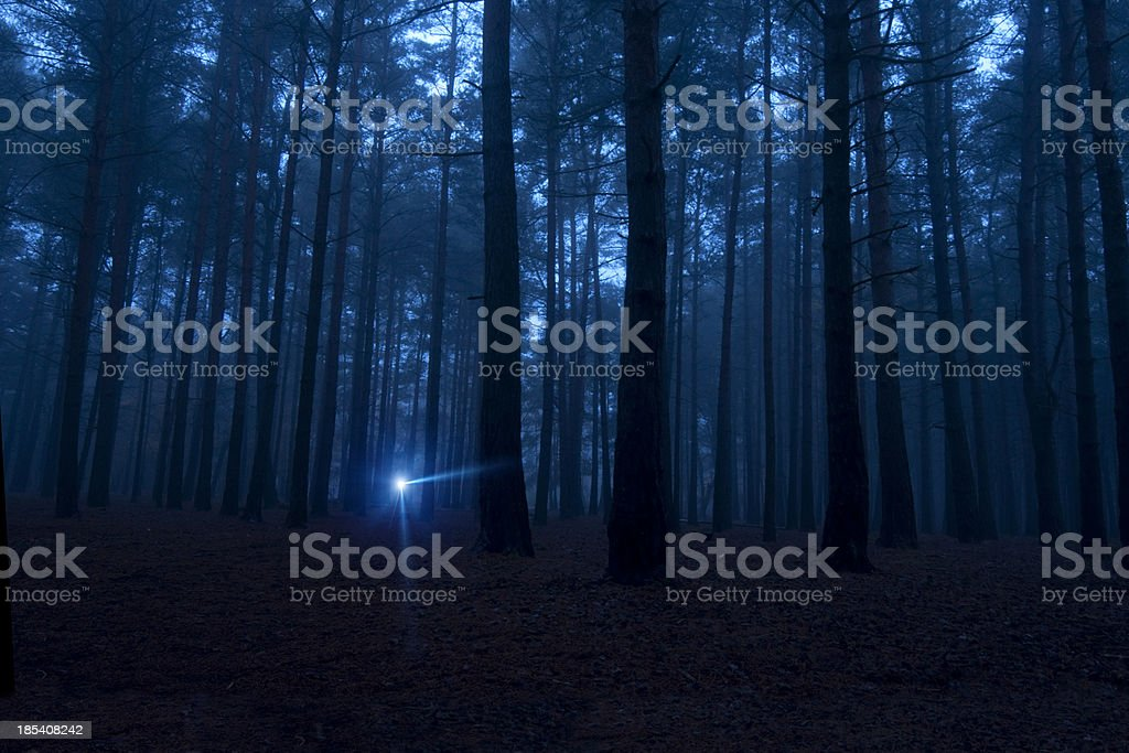 One light in the dark spooky woods at night stock photo