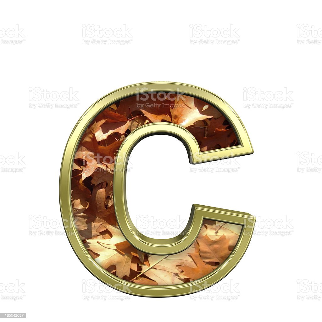 One lower case letter from autumn gold alphabet set royalty-free stock photo