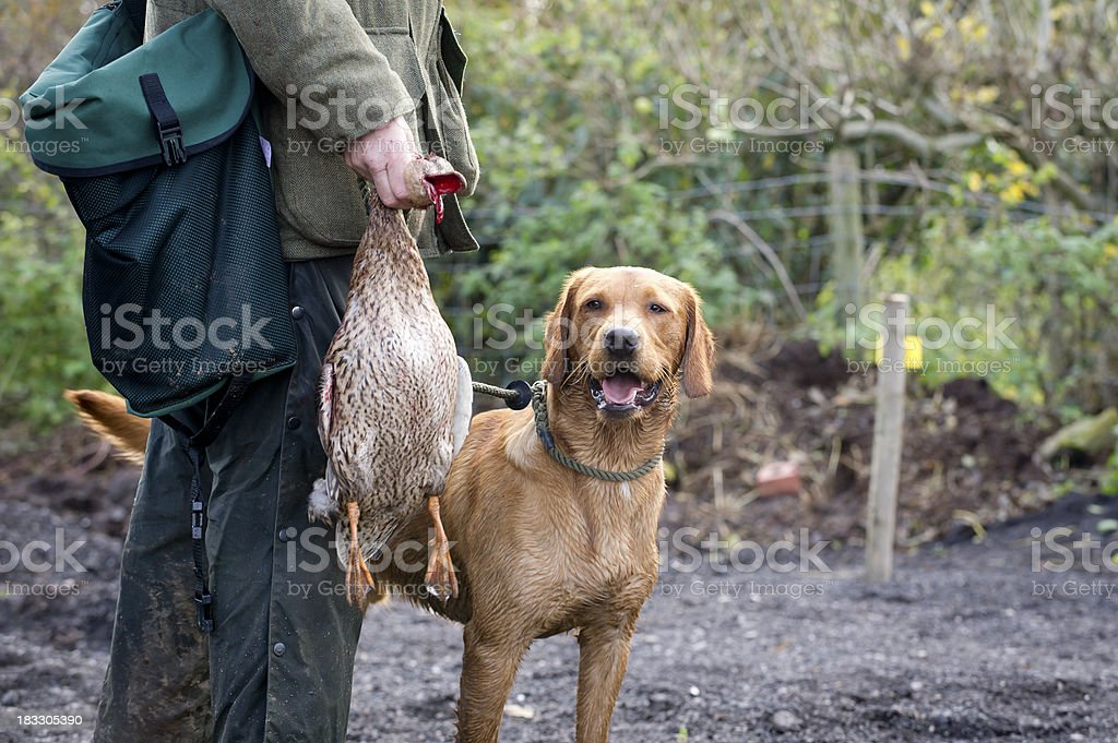 one man and his dog royalty-free stock photo