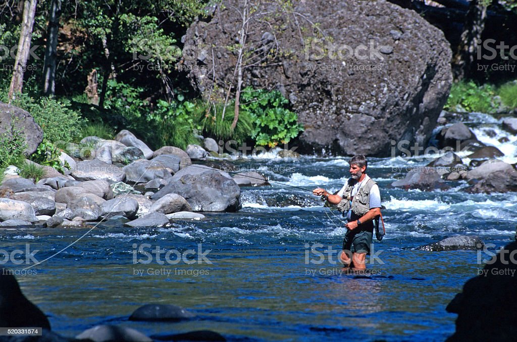 One Middle Aged Male Fishing a Whitewater Mountain Stream stock photo