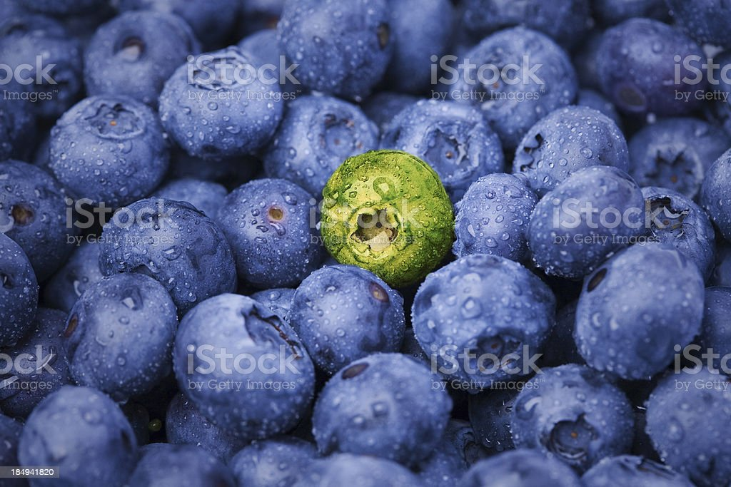 One of a kind berry stock photo