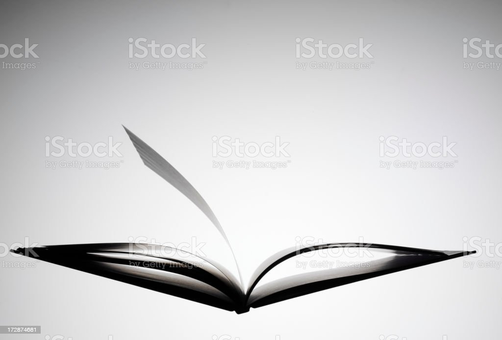 One Page in a Open Book royalty-free stock photo