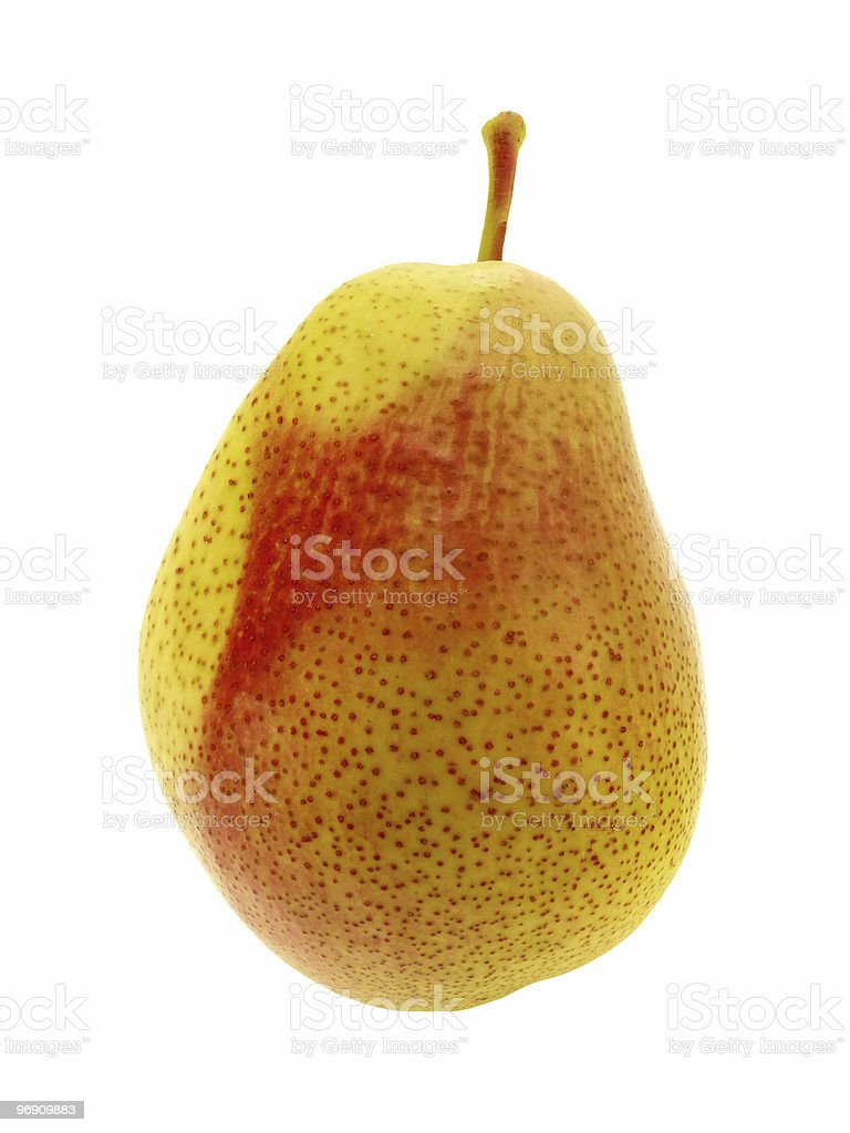 One pear stock photo