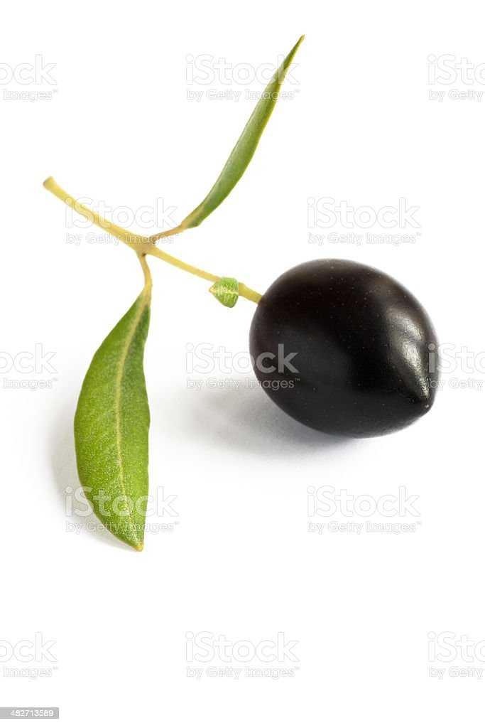 one perfect olive (olea europeana) royalty-free stock photo