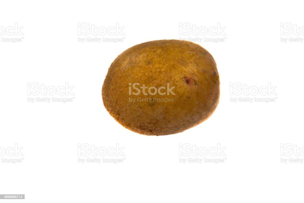 One potato isolated on white background stock photo