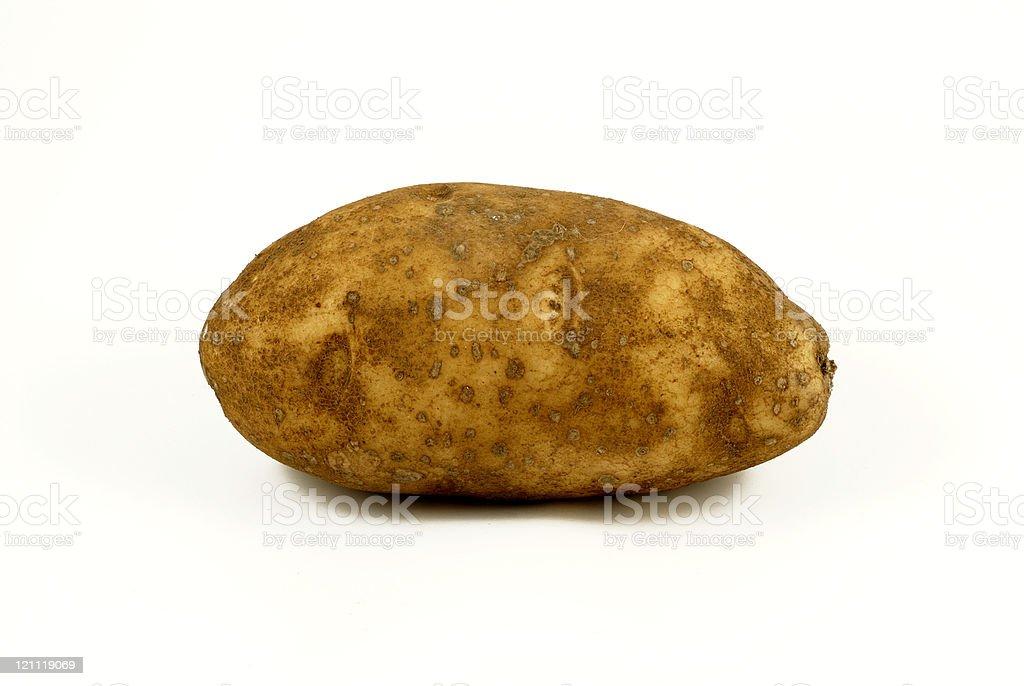One Potato royalty-free stock photo