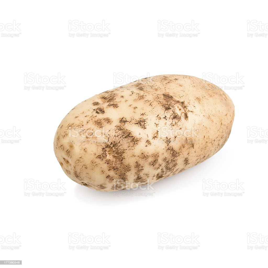 One raw potato tuber stock photo