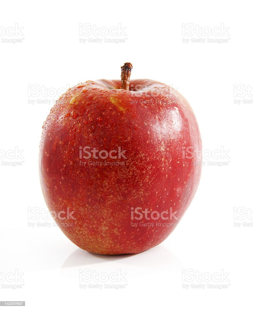 One red apple with water drops stock photo