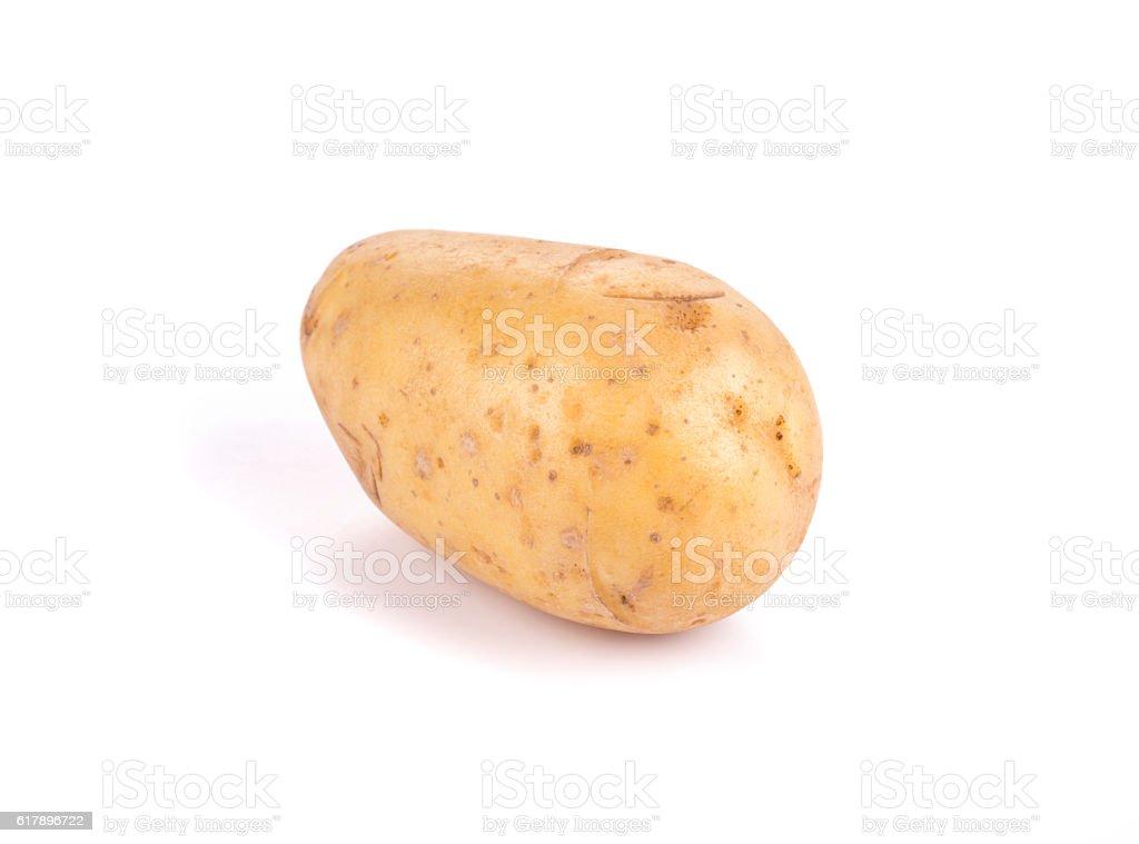 One ripe potato. stock photo