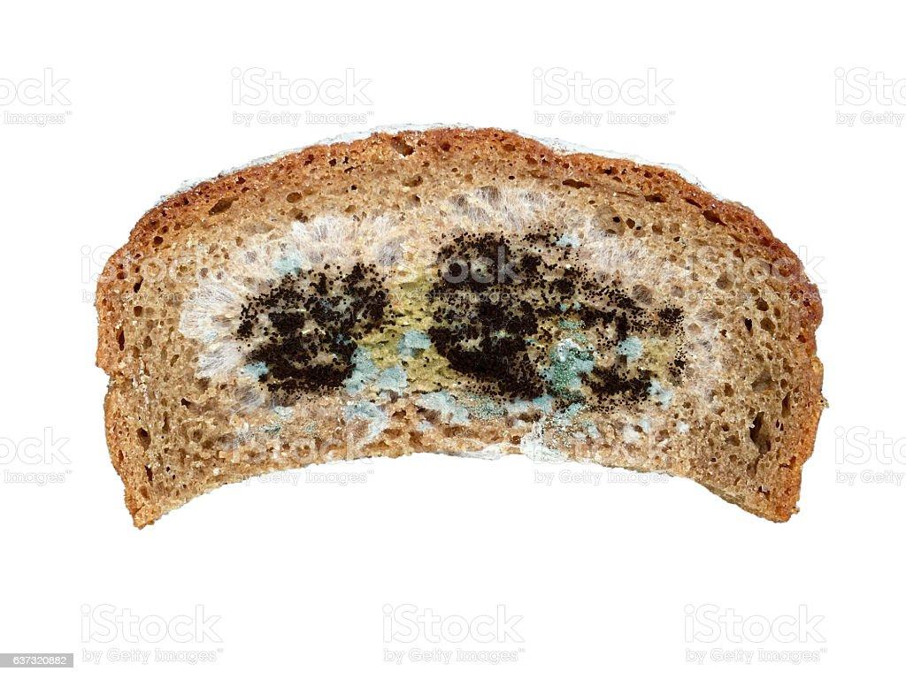 One slice of moldy bread stock photo